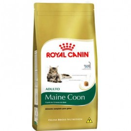 Royal Canin Maine Coon Adulto 1,5 kg